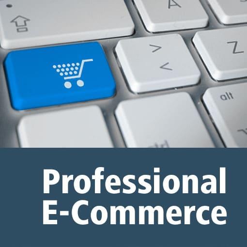 Realizzazione siti e-commerce Gestione sito e-commerce
